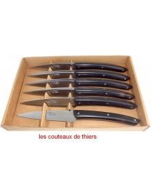 Coffret de 6 couteaux Le Thiers , manche en ebene